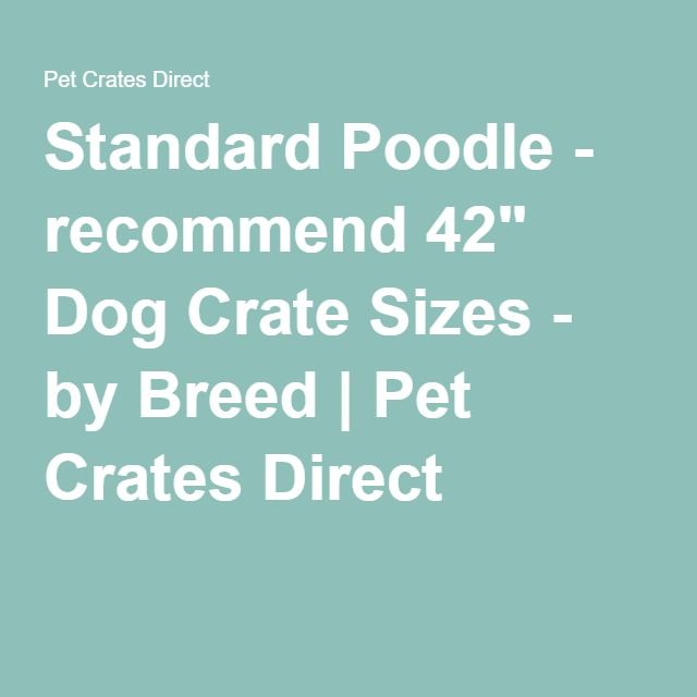 "Standard Poodle - recommend 42"" Dog Crate Sizes - by Breed 