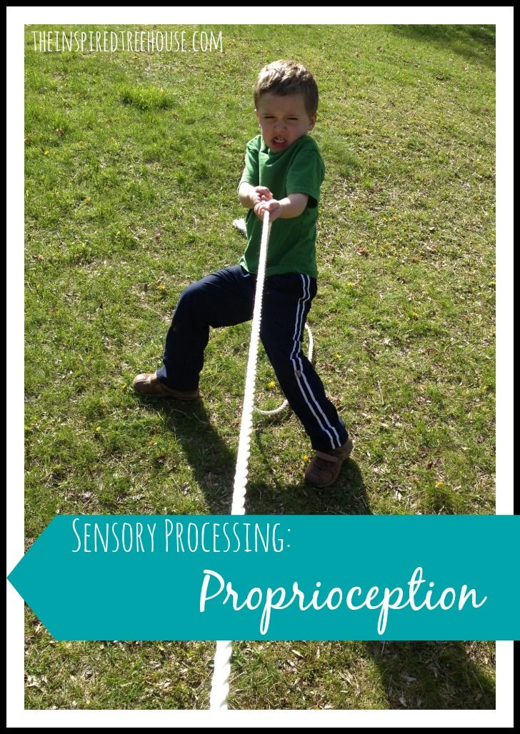 SENSORY PROCESSING: PROPRIOCEPTION - simple, concise definition with examples from The Inspired Treehouse. Repinned by SOS Inc. Resources pinterest.com/sostherapy/.