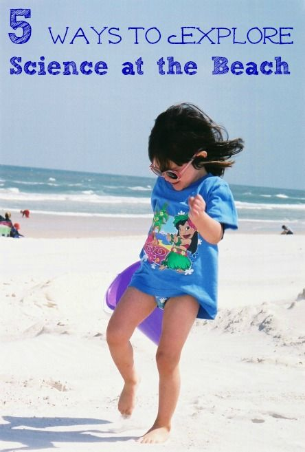 Things to do at the Beach -- science of tides, habitats, seashells and sand.  Ocean science   Beach activities  