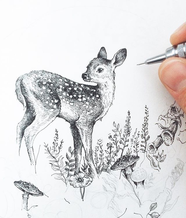 Hello Bambi  pencil and ink sketch for my next exciting project - stay tuned!