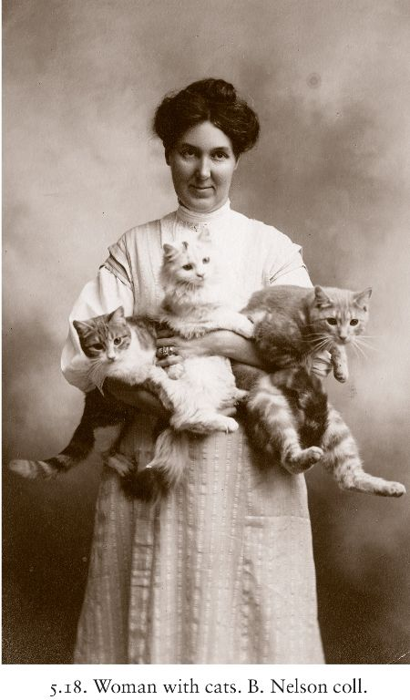 Knowing how special getting your picture taken used to be, the fact that this woman took her cats for this is beyond sweet.