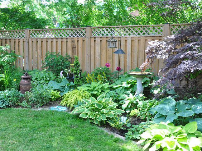 Three Dogs In A Garden A Shade Garden In Oakville Ontario In