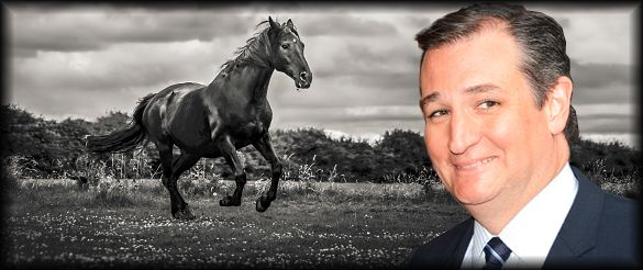 "Thank you, Rush Limbaugh, for the kind words: ""I think that there is a dark horse in this entire thing. I think there is one candidate who is positioned here... There has been somebody trucking along here, steady Eddie that has continued to be who he is and continues to lay down foundational markers for himself, and that's Ted Cruz... Cruz is inarguably thoroughbred conservative."" ‪#‎TEDCRUZ2016‬"