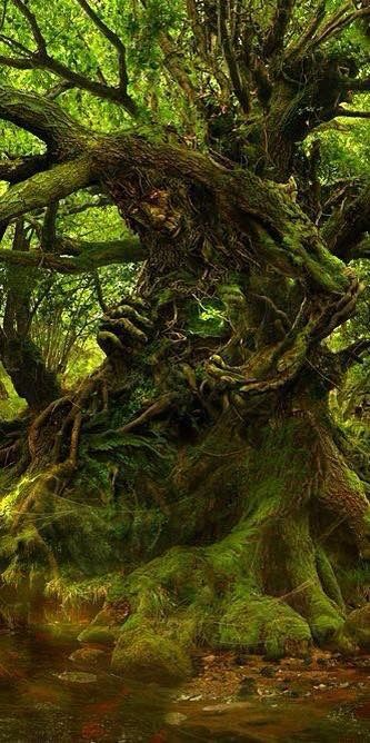 Wyrdwood Giant