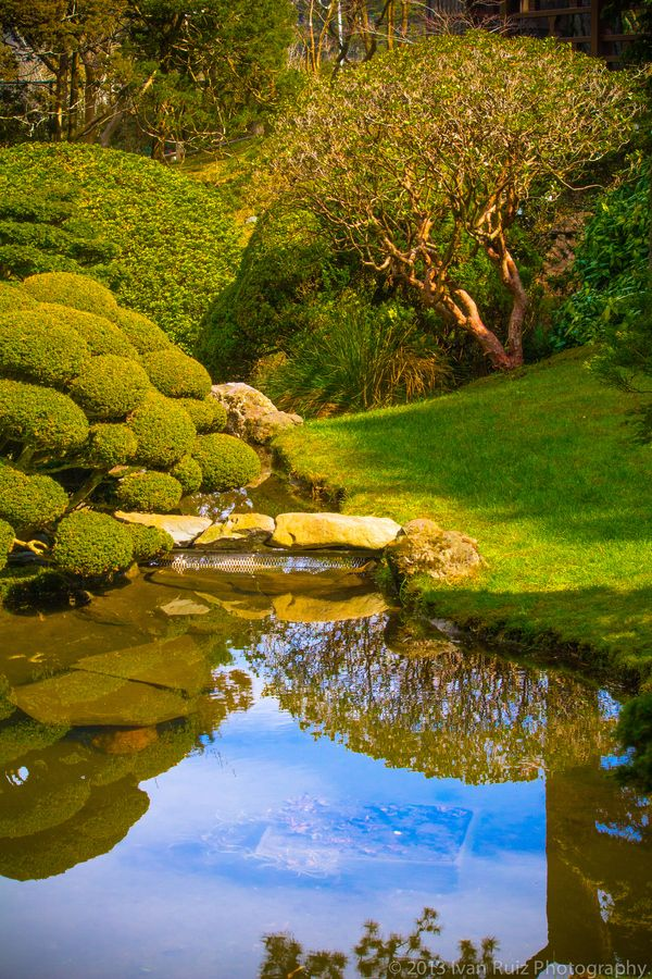 17 best images about travel san francisco on pinterest - Japanese tea garden san francisco ...