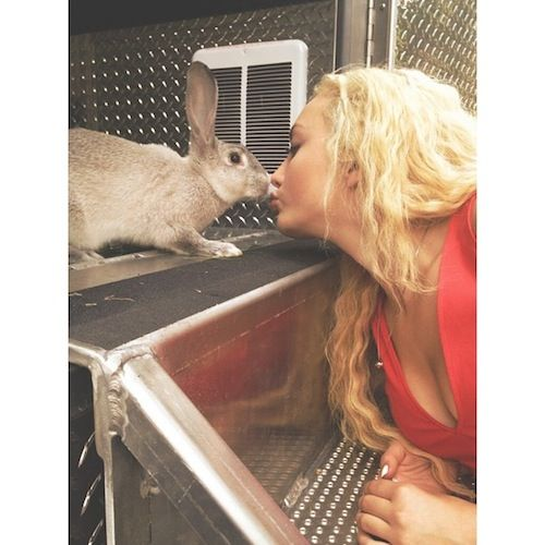 Peyton List Kisses a Bunny!