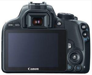 The Top 5 Entry-Level DSLRs: Canon EOS Rebel SL1