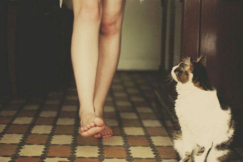 cat & me