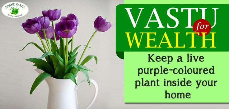 163 Best Vastu And Feng Shui Images On Pinterest Vastu