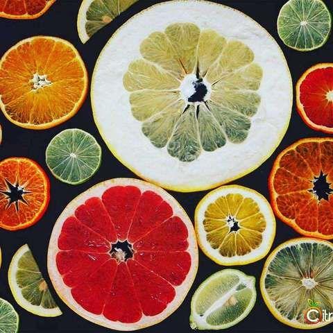 . Venta de fruta fresca y plantas de #cítricos comerciales & exóticos, recolección y envío en menos de 48h. Sin tratamientos postcosecha. ~ Precio orientativo. www.citrusandlife.com  #Naranjas #Navelate #Lanelate #Mandarinas #Limones #YUZU #Limequat #Kumquat