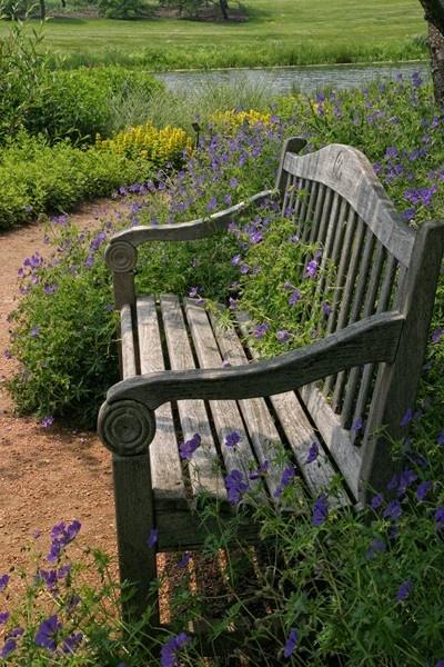 16 mejores imágenes sobre bancos en Pinterest Plantas y Jardín - jardines con bancas