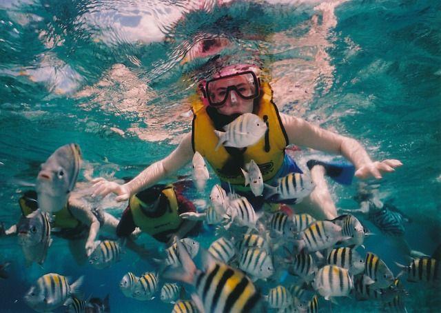 Välinvesterad läsning: Måste man vara en bra simmare för att snorkla? --> http://wolber.se/bra-simmare-snorkla/