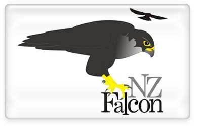 Falcon Sightings throughout New Zealand
