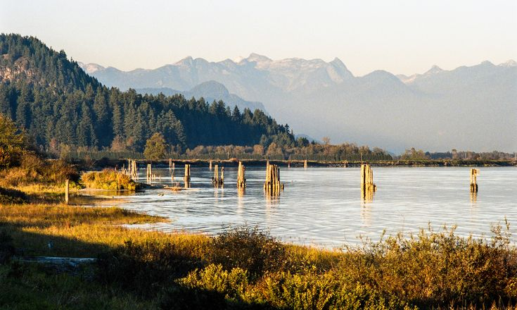 port coquitlam bc | Lower Pitt River West side, Port Coquitlam, BC, Canada