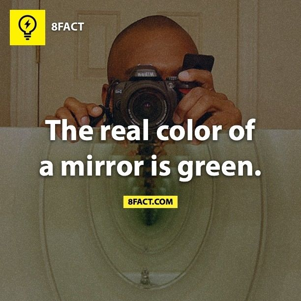 8fact. I think most people know/knew this