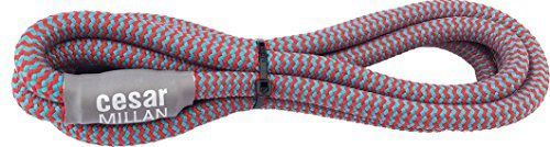Aus der Kategorie Übungsleinen  gibt es, zum Preis von   Diese Trainingsleine von Cesar Millan bietet eine optimale Kontrolle beim Spaziergang da das Halsteil richtig hinter den Ohren platziert werden kann. Der zusätzlicher Stopper fixiert das Halsteil, so dass es nicht verrutscht. Die Leine erlaubt eine feste und doch schnelle und schonende Korrektur Ihres Hundes. Die Schlinge lockert sich sofort wieder, sobald Sie den Zug von der Leine nehmen Sie benötigen kein zusätzliches Halsband mehr…
