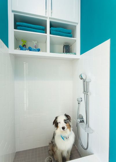 81 best pet friendly ideas images on pinterest love pet learn how to install a dog washing station in your donald gardner dream home solutioingenieria Image collections