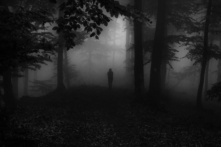 I'm In The Dark In Here by Serban Bogdan on Art Limited