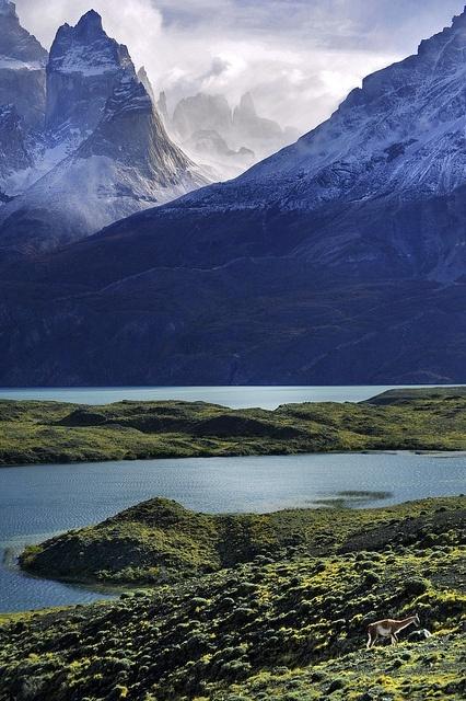 Lago Nordenskiöld, Torres del Paine National Park, #Patagonia, #Chile