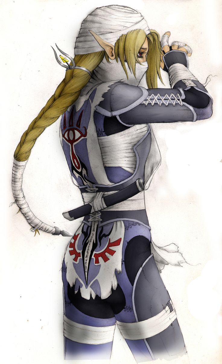 Sheik Legend of Zelda Wolf | false there is indeed a ninja in the legend of zelda