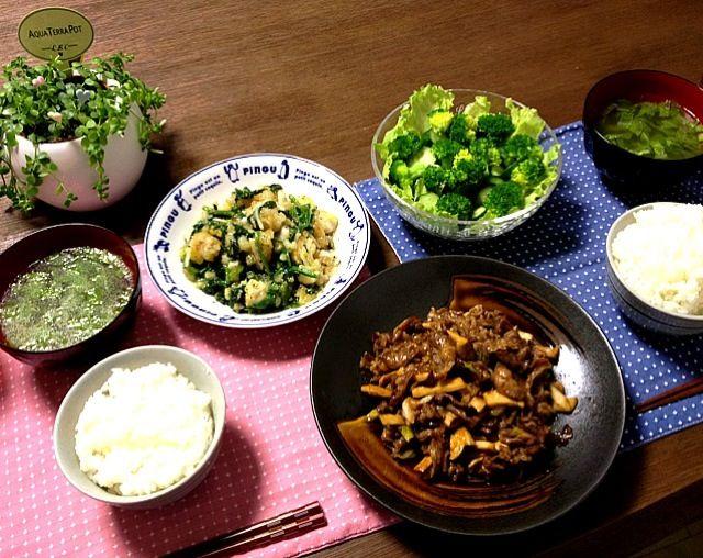 今晩はグリーン系でまとまっちゃいました。 (^_^) - 20件のもぐもぐ - 牛肉とエリンギのオイスターソース炒め、キャベツスープ、鱈とほうれん草の塩炒め、グリーンサラダ by pentarou