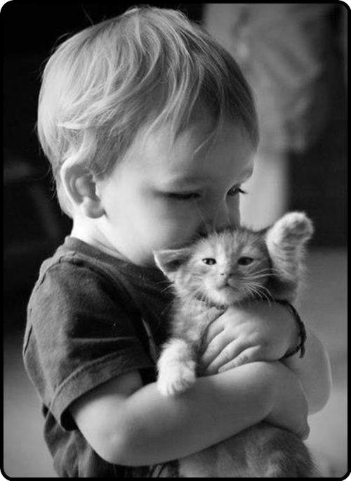Tierna escena... ¡Amor sincero! #cute #adorable #gatos #cat #mascotas #pets