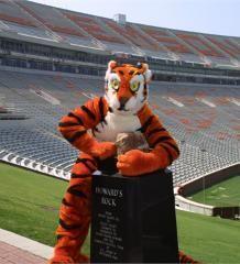 Clemson Tiger!