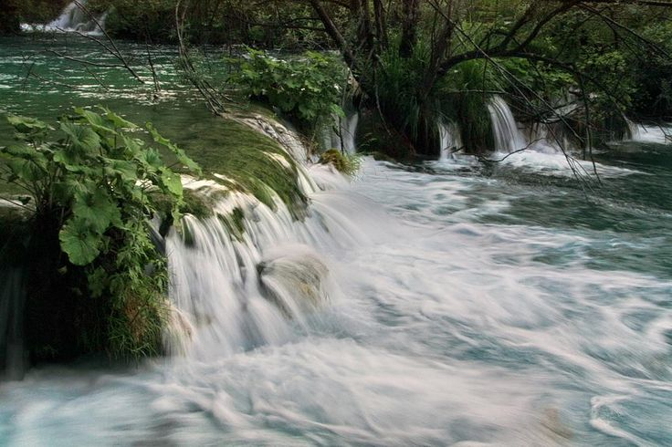 Parque #Plitvice - #Croácia, no coração dos Balcãs, lugar com paisagem de #lagos, plantas e flores, classificado como Património da Humanidade - UNESCO