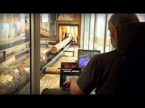 Tømmer og sortering ved avdeling Larvik. #film #Larvik #industri