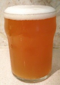 Pumpkin IPA HomeBrew Recipe. All Grain Pumpkin IPA Recipe. Looking for a fun beer to brew this Fall, try a Pumpkin IPA. A mash-up of earthy and sweet pumpkin flavors with light caramel malts and piney/woody Simcoe hops. Pours a nice seasonal pale orange color. Dry-hopped with Simcoe hops and a cinnamon stick.