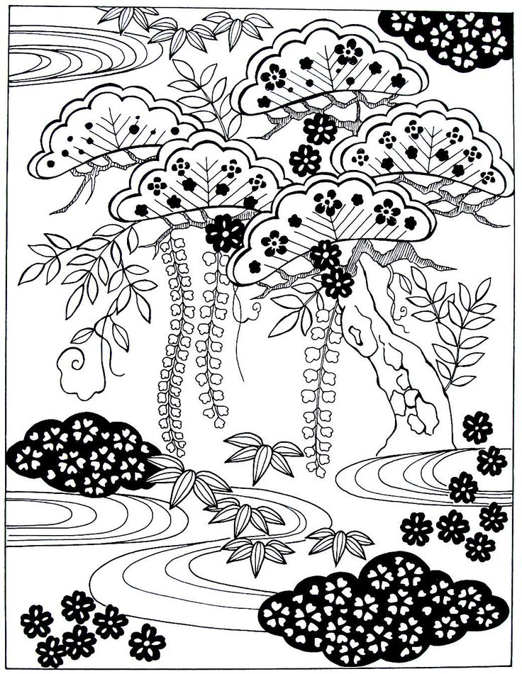 japanese umbrella pine wisteria bamboo leaves japanese design coloring book printable page - Japanese Coloring Books