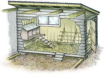 Build A Chicken Coop | Spring 2008 Out Here Magazine | Tractor Supply Co.