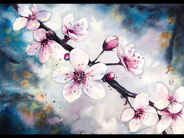 Cherry Blossom Flowers By Night Real Time Video Color Swatches Pencil Sketches Maria Raczynska On Patreon Cherry Blossom Watercolor Cherry Blossom Painting Flower Painting