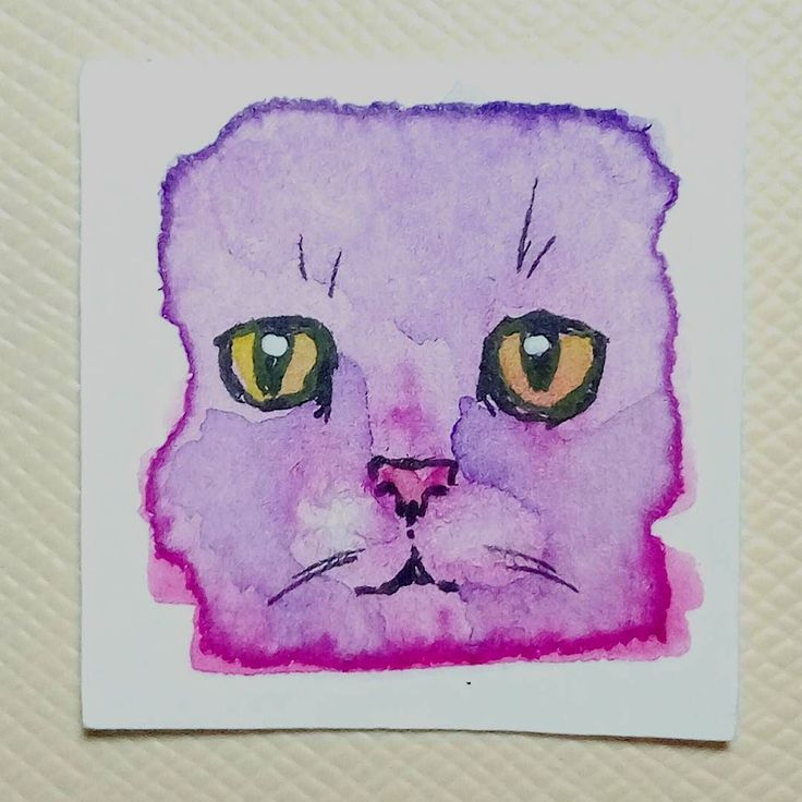 Day 93 #the100dayproject #the100dayprojectinchies #watercolor #cat