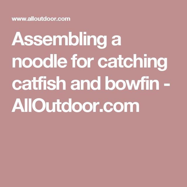 Assembling a noodle for catching catfish and bowfin - AllOutdoor.com