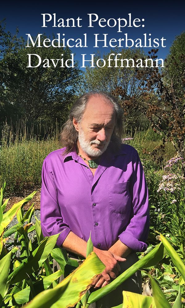 David's story is steeped in a healthy skepticism for authority and an innate desire to bring healing to the planet. Learn more about our chief formulator on Plant Power Journal.