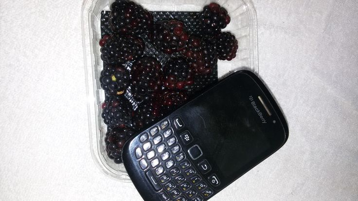 realy blackberry