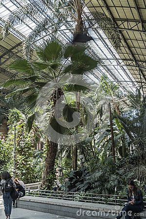 Inside Palacio de Cristal in Parque del Retiro, in Madrid, Spain. Europe
