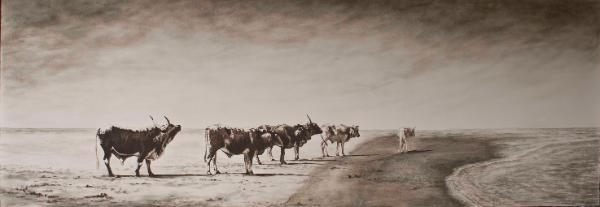 Oil painting - Nguni on Beach