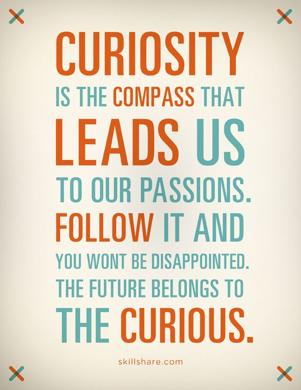 Curiosity Is The Compass That Leads Us To Our Passions Follow It Delectable Curiosity Quotes