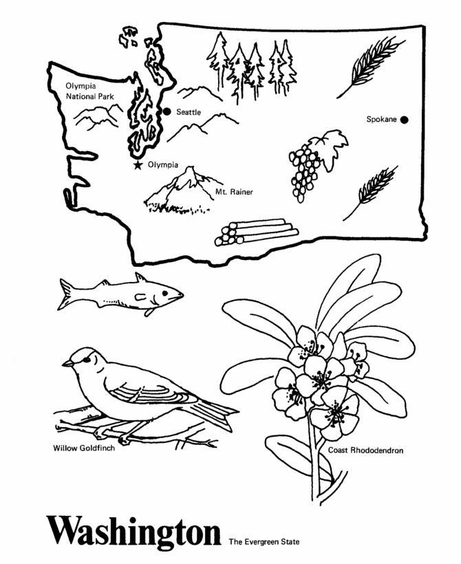 Washington State Outline Coloring Page Washington State Outline
