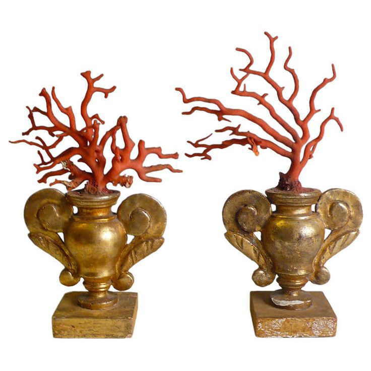 Rare Pair Of Coral Branches.  | From a unique collection of antique and modern decorative objects at http://www.1stdibs.com/furniture/more-furniture-collectibles/decorative-objects/