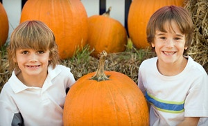 Groupon - $16 for Two Adults and Two Kids to Visit the Coconut Grove Pumpkin Patch Festival, Including Kids' Hay Maze ($32 Value) in Miami. Groupon deal price: $16.00