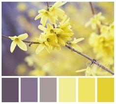 yellow grey colour scheme - Google Search