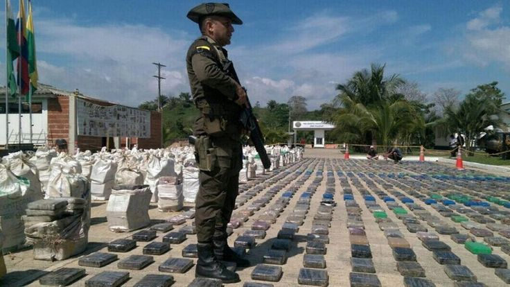 Police in Colombia say they have seized nearly eight tonnes of cocaine in the town of Turbo, their biggest domestic haul.