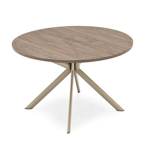 Les 25 meilleures id es concernant table ronde extensible for Table ronde design extensible