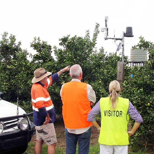 The Carter & Spencer team are excited about the new addition to Spencer Ranch. The ranch now has a weather station up and operational, which provides us information on: air temperature, ground temperature, humidity, wind speed and direction, rainfall, leaf wetness and soil moisture levels.