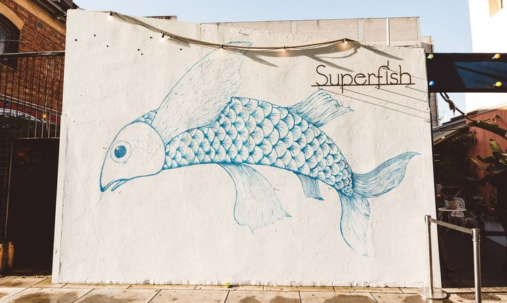 Superfish. Discover. Explore. Adelaide. Eats. Drinks. InDaily.
