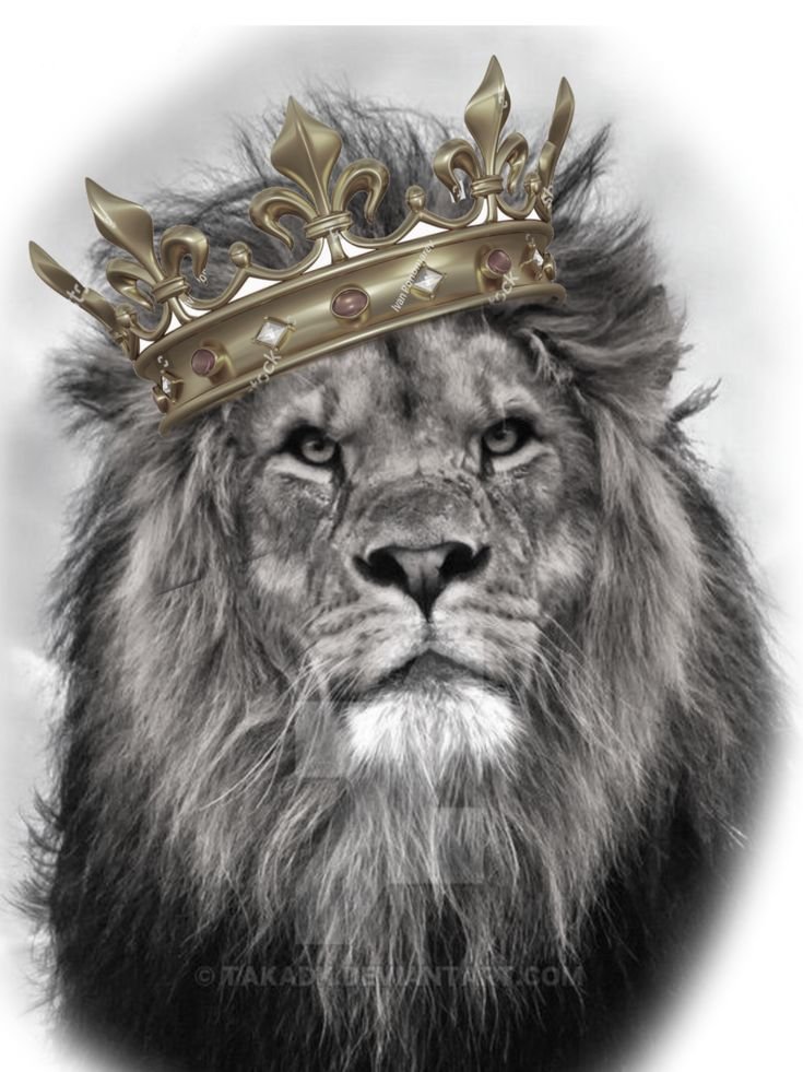 Dein süßer … Mein wunderschöner König