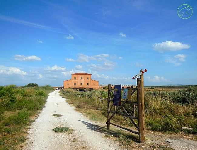 "The old ""Casa Rossa"" In Maremma"